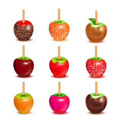 Toffee candy apples assortment set vector