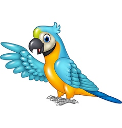Cartoon funny macaw presenting isolated vector image