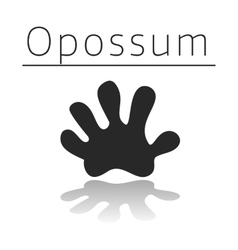 Opossum animal track vector image vector image