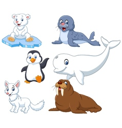 Arctics animals collection set vector image vector image