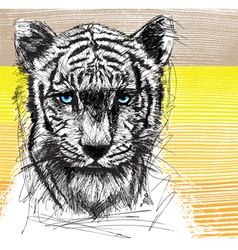 Hand draw sketch of white Tiger vector image vector image