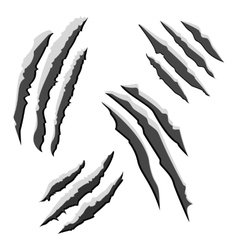 Set black claw scratches isolated on white vector