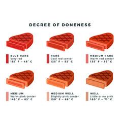 Set steaks varying degrees readiness vector