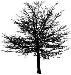 winter tree vector image