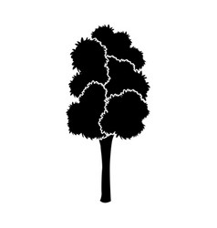 black tree silhouette leaf foliage natural image vector image vector image
