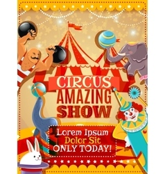 Circus performance announcement vintage poster vector image vector image
