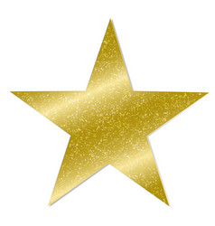 star on white background vector image vector image