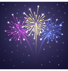 fireworks colorful 1 vector image