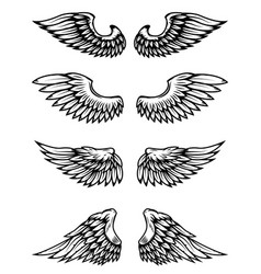set of wings isolated on white background vector image vector image