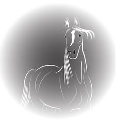 beautiful horse logo vector image