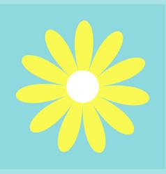 Camomile icon yellow daisy chamomile cute big vector