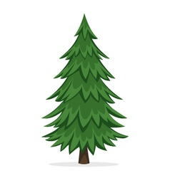 Cartoon Pine Tree vector