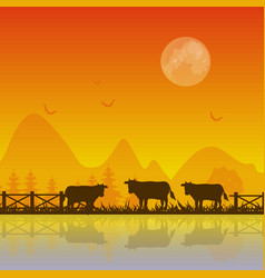 Cows silhouette at sunset background vector