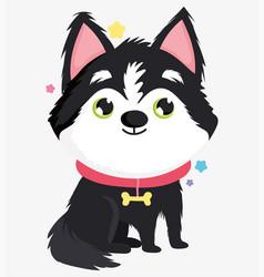 cute siberian husky dog domestic cartoon animal vector image