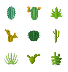 desert cactus icons set cartoon style vector image