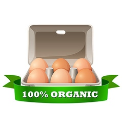 Fresh eggs in box vector