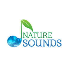Music nature sounds logo logotype vector
