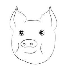 pig head isolated on white vector image