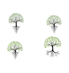 tree icon logo template vector image