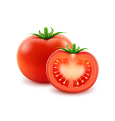 Big ripe red fresh cut whole tomato isolated vector