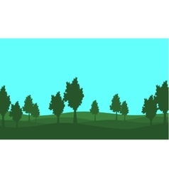 Silhouette of lined tree on the hill vector image