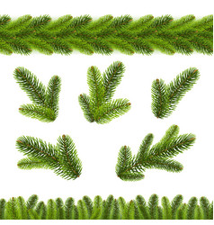 christmas fir tree branches borders white vector image