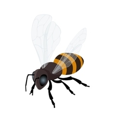 Honey bee icon Flat 3d isometric vector image