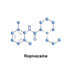 Ropivacaine anaesthetic drug vector