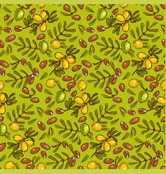 Seamless pattern argan oil vector