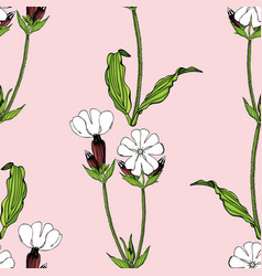 seamless pattern with white campion flowers vector image