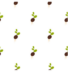 Sprout potatoes pattern flat vector