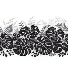 tropical plants monochrome pattern vector image