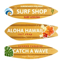 wooden surfboards vector image