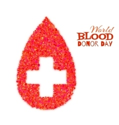 World blood donor day concept with red drop and vector image