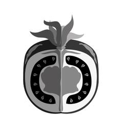 Fresh fruit flat isolated icon vector