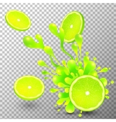 Lime slice with juice splash on transparent vector