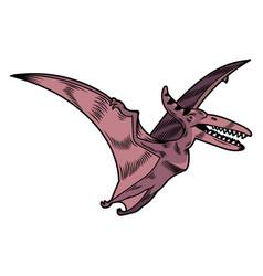 Pterodactyl dangerous predator dino flying vector