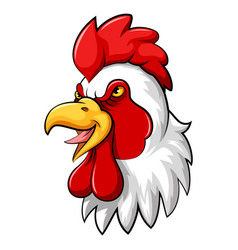 Rooster head mascot on a white background vector