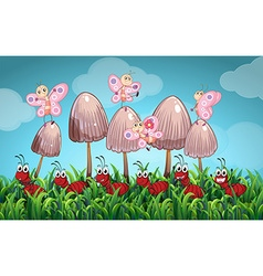 Scene with butterflies and ants in the garden vector image