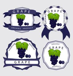 The blue grape vector