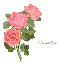 invitation card with bouquet of roses for your vector image vector image