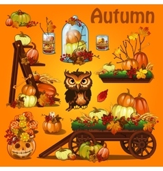 Autumn postcard with pumpkin and leaves vector image