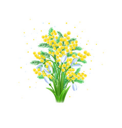 beauty spring mimosa flowers and snowdrop vector image