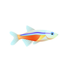 Bright neon tetra fish isolated on white poster vector
