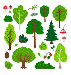cartoon forest tree set vector image