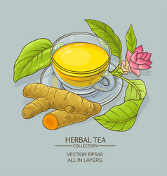 Cup of turmeric tea vector