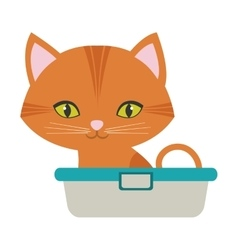 Orange small cat sitting green eyes bathtub vector
