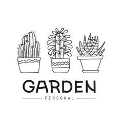 personal garden set of hand-drawn succulent vector image