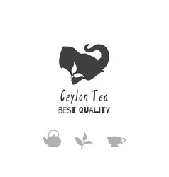 tea shop logo template vector image