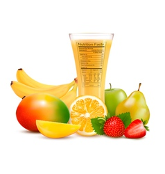 Fresh fruit and a glass of juice with a nutrition vector image vector image